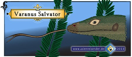 Sketch_of_Varanus_Salvator_Water_Monitor_Asienreisender_700px